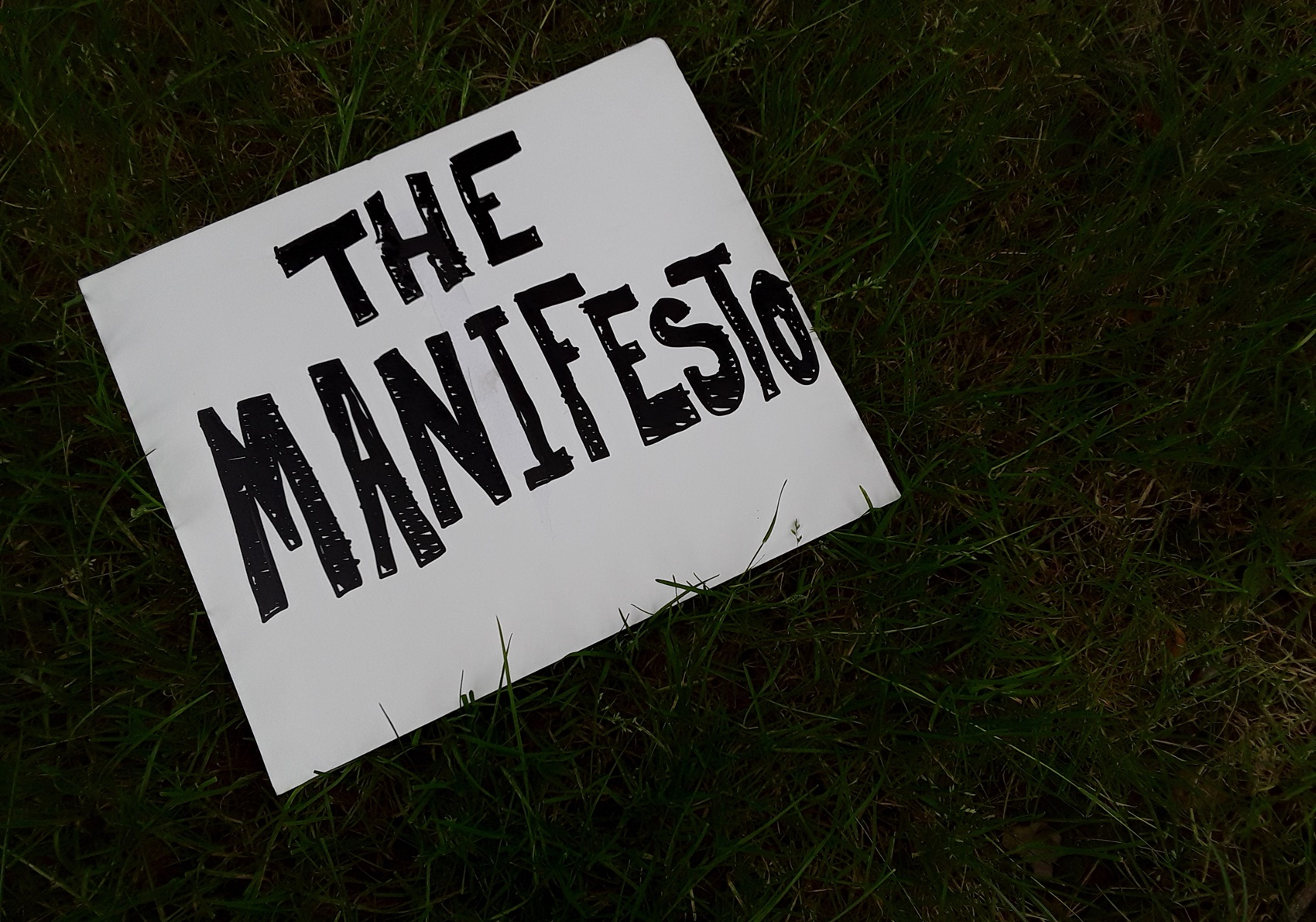 The disruptors' series: the making of the manifesto